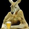 Kangaroo Edward