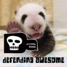 DefendAwesome
