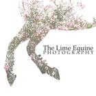 thelimeequine