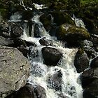 HAWESWATER FALLS by LAWSON TAYLOR