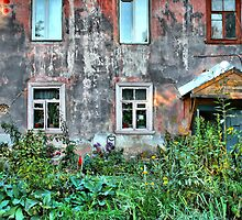 abandoned  house by Medeu