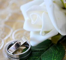 Stock Wedding Rings by jbowler