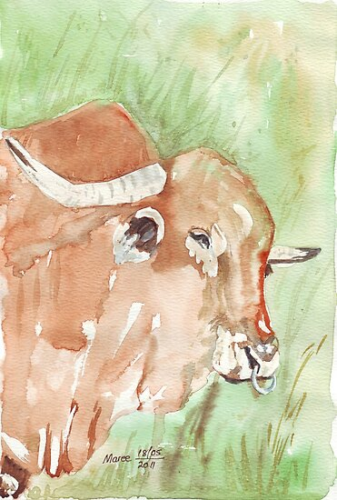 Baffle them with bull! by Maree  Clarkson