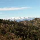 View of Mount Baldy by Bearie23