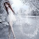 La Valse de Neige by Methyss Design
