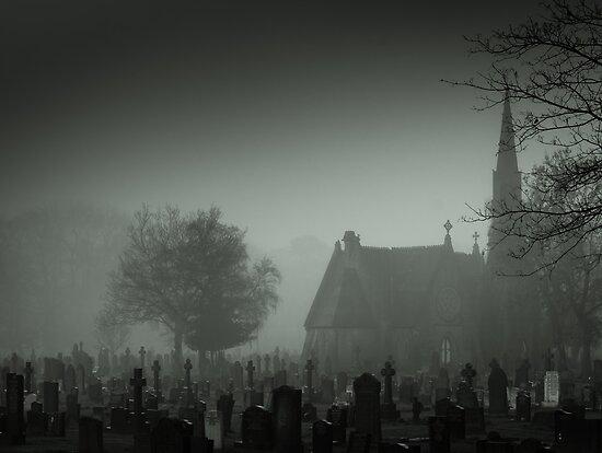 Boneyard by Daniel Yates