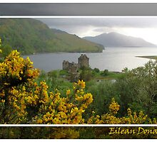 Eilean Donan Castle and gorse by bedoubleyou