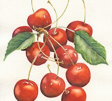 Cherries by Marsha Elliott
