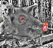 Inspired by the song title 'Pigs'  by Pink Floyd. by Eve Parry