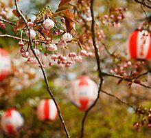 Cherry Blossoms - Maruyama-kuen, Kyoto by Lynnette Peizer