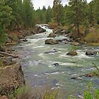 The Deschutes River by AdventureGuy