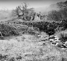 stile and stream 2 by nadine henley