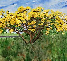 Yellow Flame Tree by tatoguzman