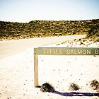 Rottnest Island: Little Salmon Bay by Janice Kho