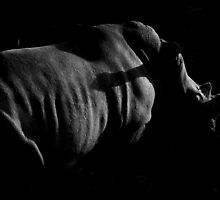 Rhino Light. by mongogushi