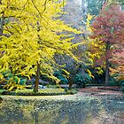 Autumn, Alfred Nicholas Memorial Gardens, Victoria, Australia. by johnrf