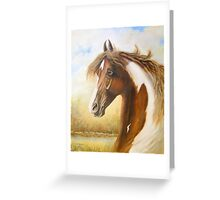 Spotted saddle horse Greeting Card