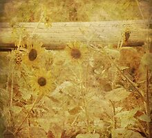 Country Sunflowers by BPhotographer