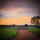 Welcome Home - Vicenza Station, QLD by Sally Werner