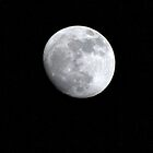 Lunar by David Brooks