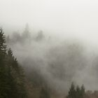 Foggy Mountain  by jaycob