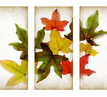 Frozen Leaves Triptych by Barb Leopold