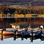 Fishing Boats On The Carron Dam by Jim Wilson