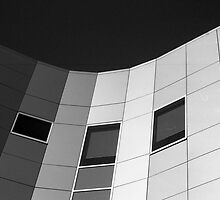 Grey Scale by Malcolm Clark