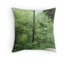 Little Crum Creek Park... or Narnia? Throw Pillow