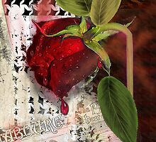 As the Rose Weeps by Alma Lee