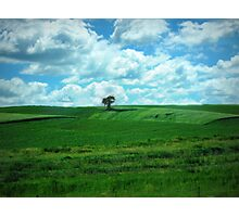 Summer Country in Iowa Photographic Print