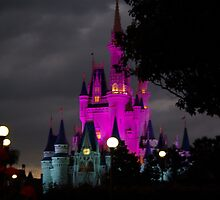 Magic Kingdom Castle at Night by Isabel Bush