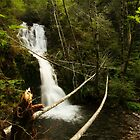 Port Alice Hidden Falls by EchoNorth