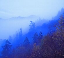 MOUNTAIN MIST by Chuck Wickham