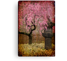 Asian Spring Canvas Print