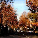 Autumn by alyssa naccarella