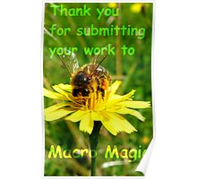 Thank you for submitting your work to Macro Magic! Poster