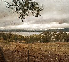 Lake Burrendong by garts