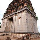 Senji Fort by Arvind Balaraman