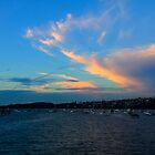 Rose Bay on Fire by Marius Brecher