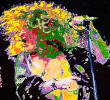 Robert Plant by Barry Novis