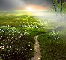 Fantasy Land by Igor Zenin