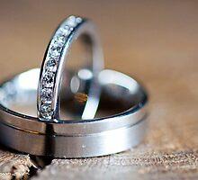 Wedding rings on wooden log by deeorgan