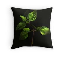 Thai Basil Throw Pillow