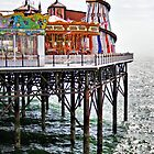 Brighton pier by Roxy J