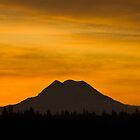 Mount Rainier Sunrise by nwexposure