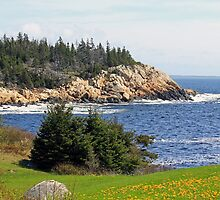 Herring Cove, NOVA SCOTIA by HALIFAXPHOTO