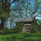 Pioneer Homestead by wiscbackroadz