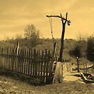 Antique Beam Well in Barda, Romania - sepia by Dennis Melling