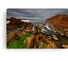 Rough as Guts Tarkine Coast Canvas Print